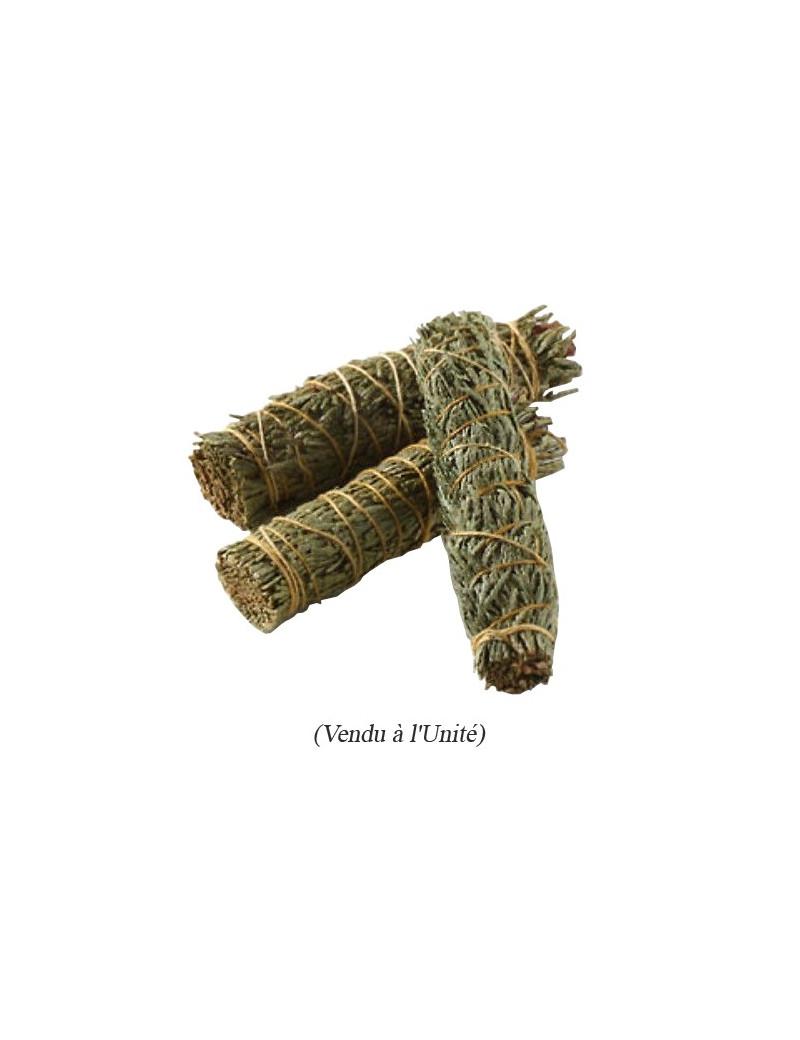 Cèdre Blanc (Thuya) 100% Naturel en Smudge / 20 gr. [Tim Baillou]