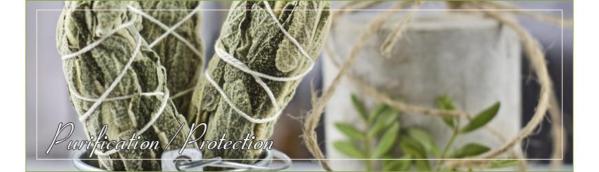 Purification / Protection : Sauge Blanche, Armoise, Palo Santo,...