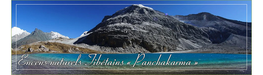 "Encens naturel Tibétain "" Panchakarma "" en bâtonnet"