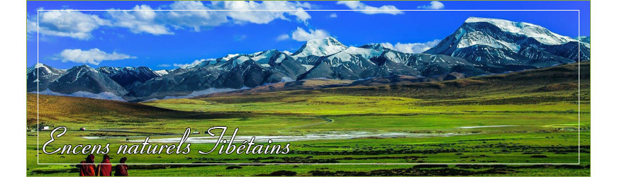 Encens naturel Tibétain en bâtonnet ~ Encens Naturel et Pur